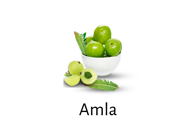 Emblica Officinalis (Amla) for Diabetes